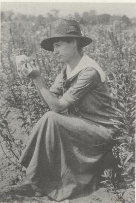 Frieda Cobb [Blanchard] (1889-1977)