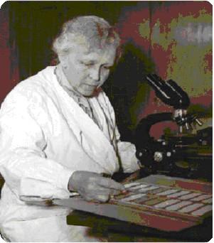 PAULA HERTWIG (1889-1983)